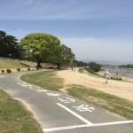 武庫川サイクリングロードは初心者にちょうどいい距離