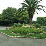 大阪堺市の大緑地公園、大泉緑地へポタリング